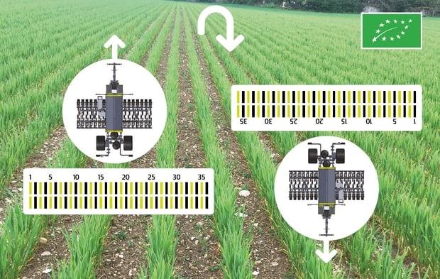semoir pour binage sky agriculture