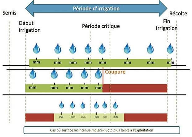 périodes d'irrigation dans la saison