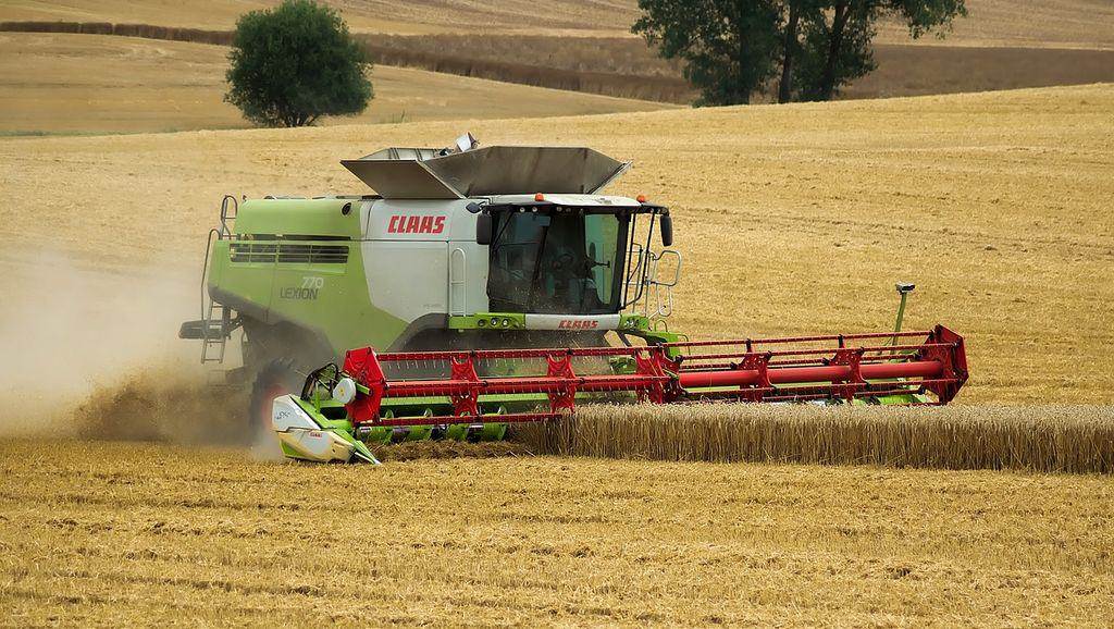 la sole du blé est en baisse en 2020
