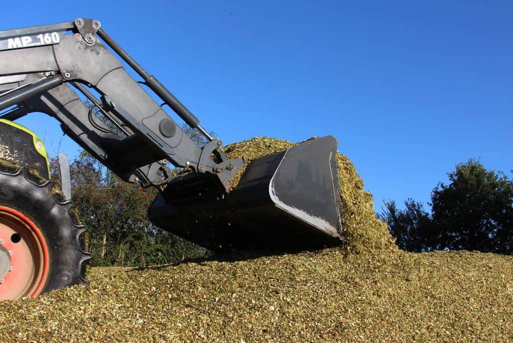 Confection de silo de maïs en 2020