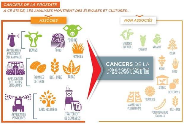 agrican cancers de la prostate