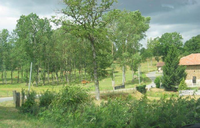 foncier agricole et ruralité