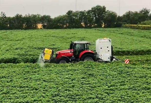 défanage électrique de pommes de terre crop.zone Nucrop